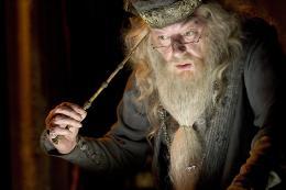 photo 136/163 - Michael Gambon - Harry Potter et la coupe de feu