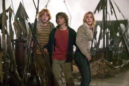 photo 140/163 - Rupert Grint, Daniel Radcliffe et Emma Watson - Harry Potter et la coupe de feu