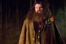 photo 156/163 - Robbie Coltrane - Harry Potter et la coupe de feu