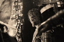photo 6/23 - Il est difficile d'être un Dieu - © Capricci Films