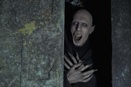 photo 11/14 - Vampires en Toute Intimité - © Wild Bunch Distribution
