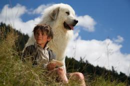 photo 13/65 - F�lix Bossuet - Belle et S�bastien, l'Aventure Continue - © Gaumont Distribution