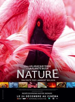 photo 19/20 - Nature - © Metropolitan FilmExport