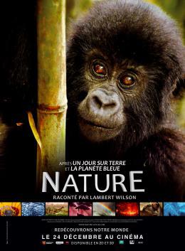 photo 20/20 - Nature - © Metropolitan FilmExport