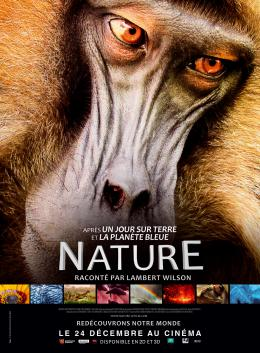 photo 16/20 - Nature - © Metropolitan FilmExport
