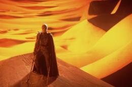 photo 189/230 - Dune