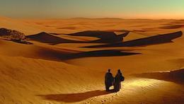 photo 6/230 - Dune - © Filmedia