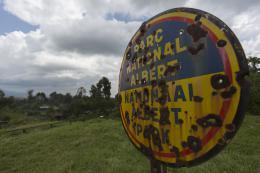 photo 16/38 - Virunga - © Netflix
