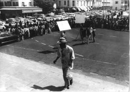 photo 1/5 - Sembene !
