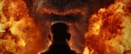 photo 41/53 - Kong : Skull Island - © Warner Bros