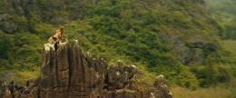 photo 33/53 - Brie Larson - Kong : Skull Island - © Warner Bros