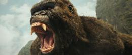 photo 35/53 - Kong : Skull Island - © Warner Bros