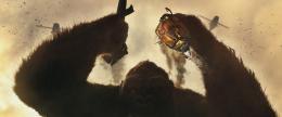 photo 49/53 - Kong : Skull Island - © Warner Bros