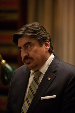 photo 59/139 - Alfred Molina - Aux Yeux de Tous - © Universal Pictures International