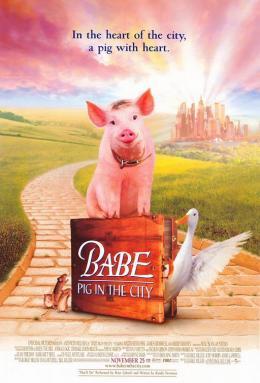 photo 1/1 - Babe, le cochon dans la ville - © GCTHV