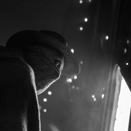 photo 6/13 - Logan - © Coming Soon