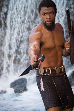 Black Panther photo 4 sur 37