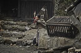 photo 2/13 - Kundo - © Metropolitan FilmsExport