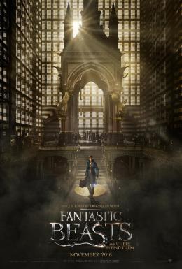 photo 19/20 - Les Animaux Fantastiques - © Warner Bros