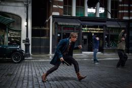 photo 14/20 - Eddie Redmayne - Les Animaux Fantastiques - © Warner Bros
