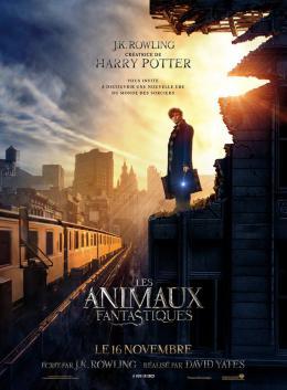 photo 18/20 - Les Animaux Fantastiques - © Warner Bros