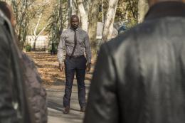 Mike Colter Marvel's Luke Cage photo 8 sur 19