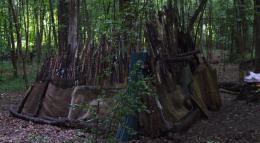 Le Bois dont les Rêves sont faits photo 6 sur 12