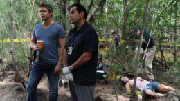 photo 3/9 - Saison 3 - The Glades - Saison 3 - © TWENTIETH CENTURY FOX FILM CORPO