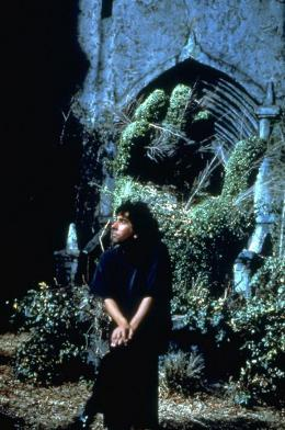 photo 11/17 - Tim Burton - Edward aux Mains d'Argent