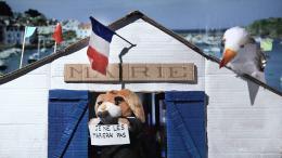 photo 14/19 - La Sociologue et l'Ourson - © Docks 66