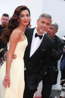 photo 95/125 - Amal Alamuddin, George Clooney - Money Monster Tapis rouge - Cannes 2016 : Julia Roberts radieuse pour Money Monster - © Isabelle Vautier pour @Commeaucinema.com