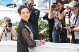 photo 17/393 - Juste la fin du monde - Festival de Cannes 2016 - Marion Cotillard - © Isabelle Vautier pour @CommeAuCinema