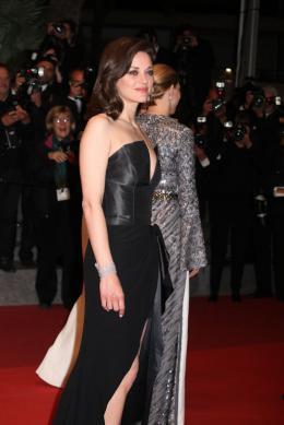photo 32/77 - Marion Cotillard - Juste La Fin du Monde Tapis Rouge - Cannes 2016 : L'équipe glamour de Juste La Fin du Monde - © Isabelle Vautier pour @CommeAuCinema