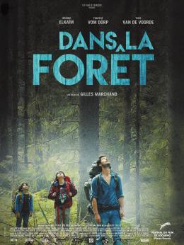 Dans la Forêt photo 7 sur 7