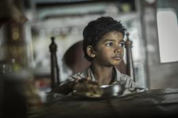photo 18/52 - Sunny Pawar - Lion - © SND