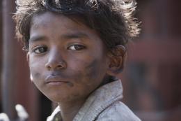 photo 12/52 - Sunny Pawar - Lion - © SND
