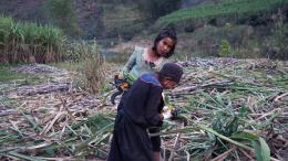 photo 3/7 - Ta'ang - Un peuple en exil, entre Chine et Birmanie - © Les Acacias