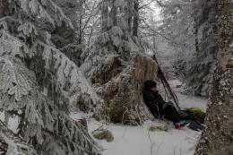 photo 1/12 - La Vallée des Loups - © Pathé Distribution