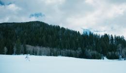 photo 24/28 - Jeremy Renner - Wind River - © Metropolitan FilmExport