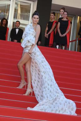 photo 25/66 - Cannes 2017 : Tapis - 120 Battements par Minute - © Isabelle Vautier pour CommeAuCinema.com