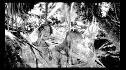 Les Garçons Sauvages photo 2 sur 13