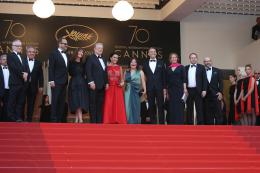 Mise à mort du Cerf Sacré Cannes 2017 - The Killing of a sacred deer Tapis photo 6 sur 91