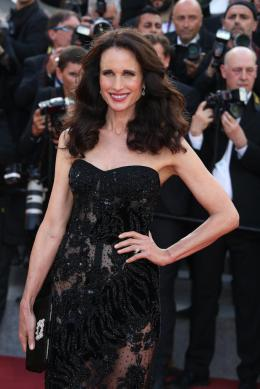 Andie MacDowell Cannes 2017 - The Killing of a sacred deer Tapis photo 3 sur 39