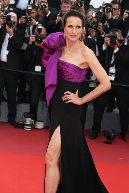 photo 66/76 - The Meyerowitz Stories - Montées des Marches - Cannes 2017 - Cannes 2017 : une pluie de stars sur le tapis rouge du Noah Baumbach - © Isabelle Vautier pour CommeAuCinema.com