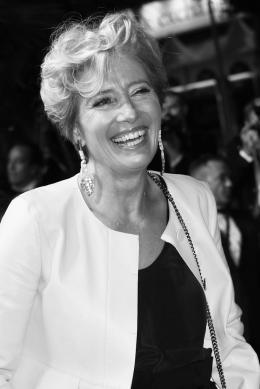 photo 24/76 - The Meyerowitz Stories - Montées des Marches - Cannes 2017 - Cannes 2017 : une pluie de stars sur le tapis rouge du Noah Baumbach - © Isabelle Vautier pour CommeAuCinema.com