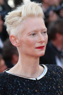 photo 44/173 - 70 ans du Festival de Cannes - Cannes 2017 : Une montée des marches exceptionnelle pour les 70 ans du Festival - © Isabelle Vautier pour CommeAuCinema.com