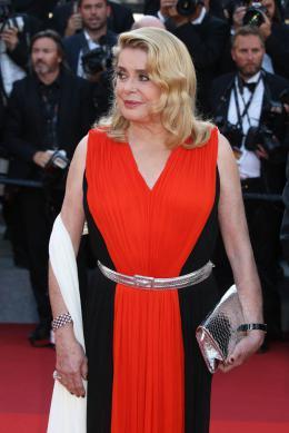photo 145/173 - 70 ans du Festival de Cannes - Cannes 2017 : Une montée des marches exceptionnelle pour les 70 ans du Festival - © Isabelle Vautier pour CommeAuCinema.com