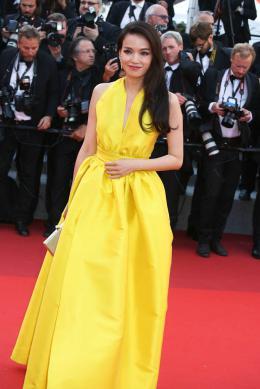 photo 40/173 - 70 ans du Festival de Cannes - Cannes 2017 : Une montée des marches exceptionnelle pour les 70 ans du Festival - © Isabelle Vautier pour CommeAuCinema.com