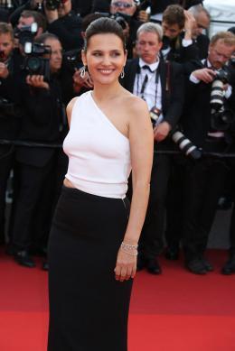 photo 43/173 - 70 ans du Festival de Cannes - Cannes 2017 : Une montée des marches exceptionnelle pour les 70 ans du Festival - © Isabelle Vautier pour CommeAuCinema.com