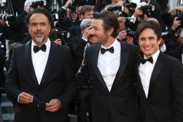 photo 118/173 - 70 ans du Festival de Cannes - Cannes 2017 : Une montée des marches exceptionnelle pour les 70 ans du Festival - © Isabelle Vautier pour CommeAuCinema.com